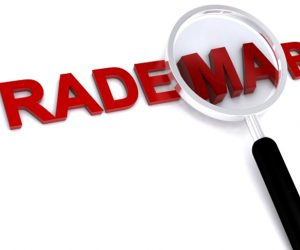 Investigations in defense of trademark, patent and intellectual property rights increase by 30%
