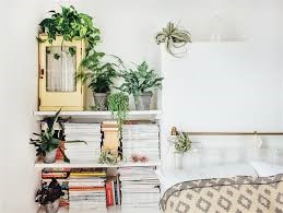 Reviving your Home Room by Room on a Budget